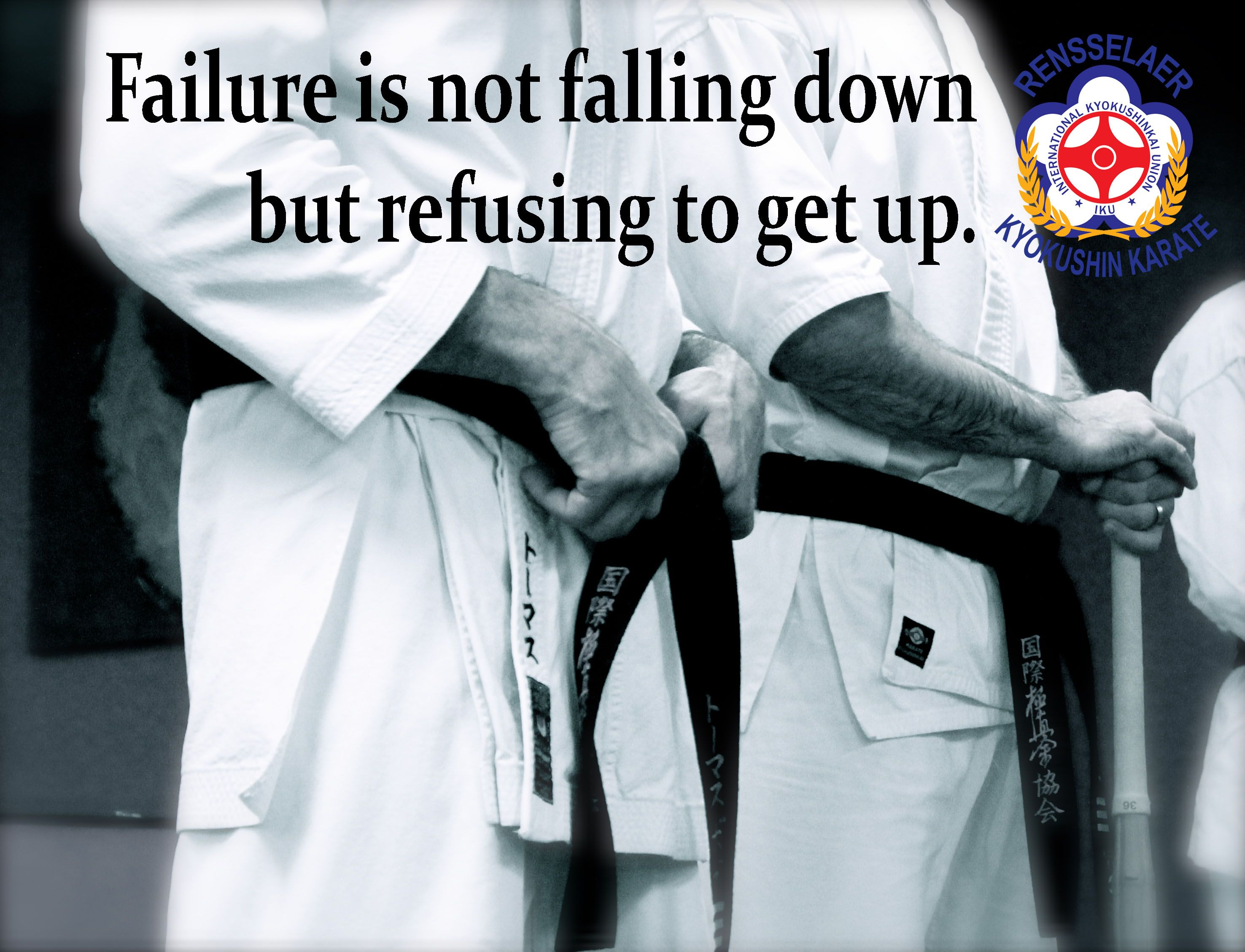 Taekwondo Quotes Failure Is Not Falling Down But Refusing To Get Uposu  Quotes