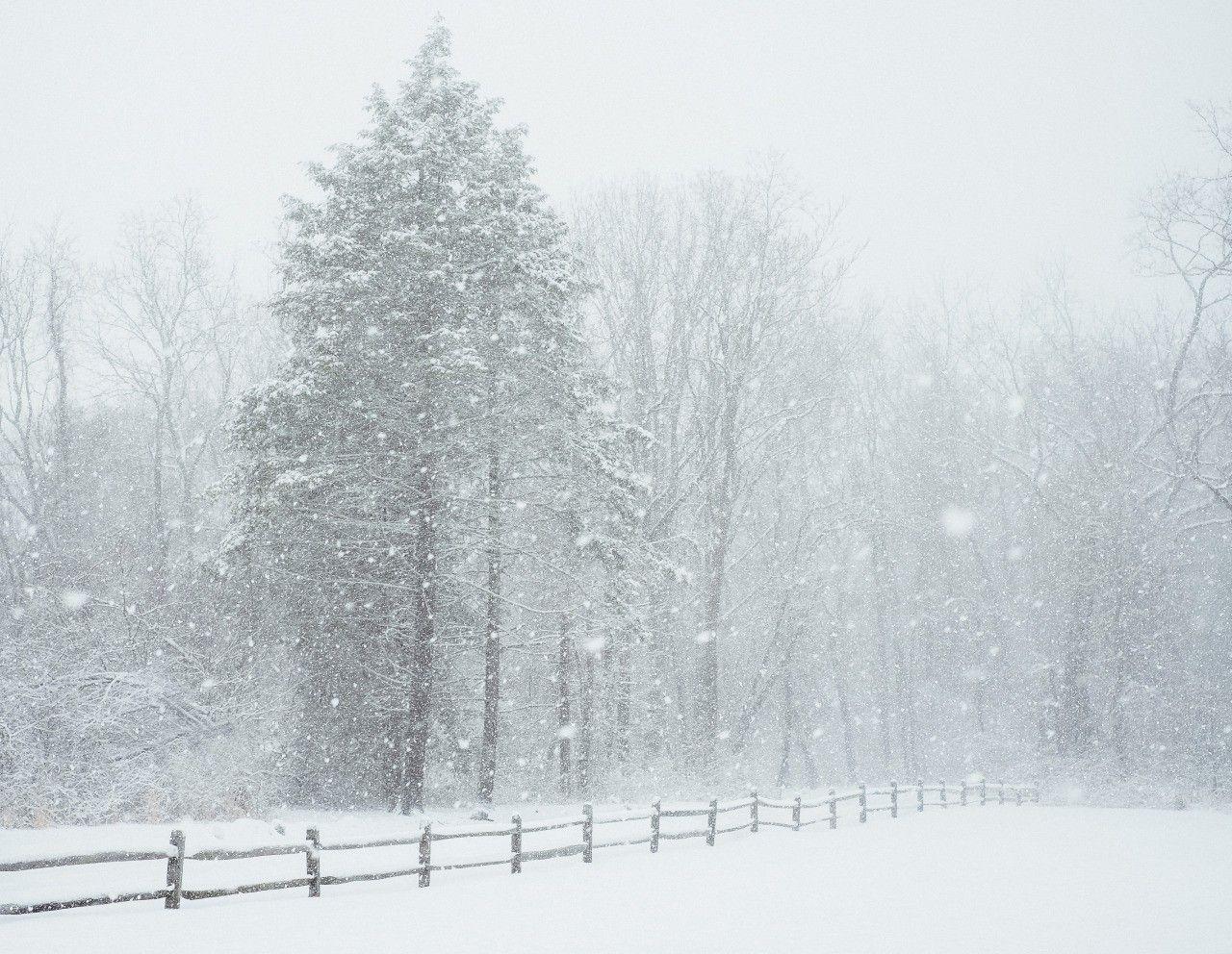 Wonderland Winter tumblr pictures catalog photo