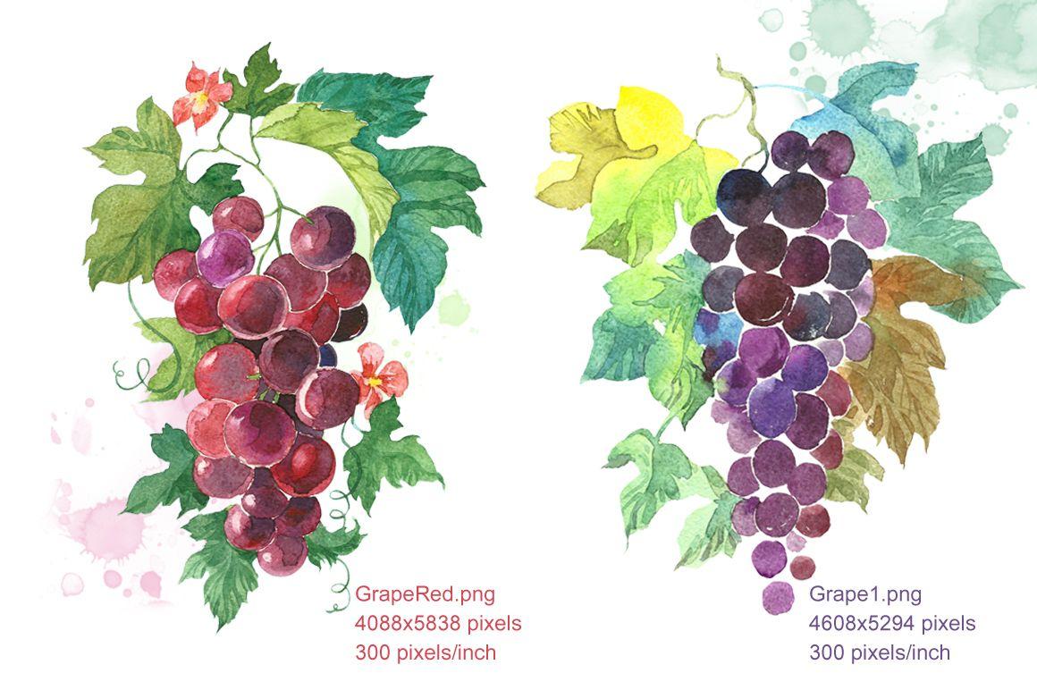 Set Watercolor | Цветы и Яркие цвета