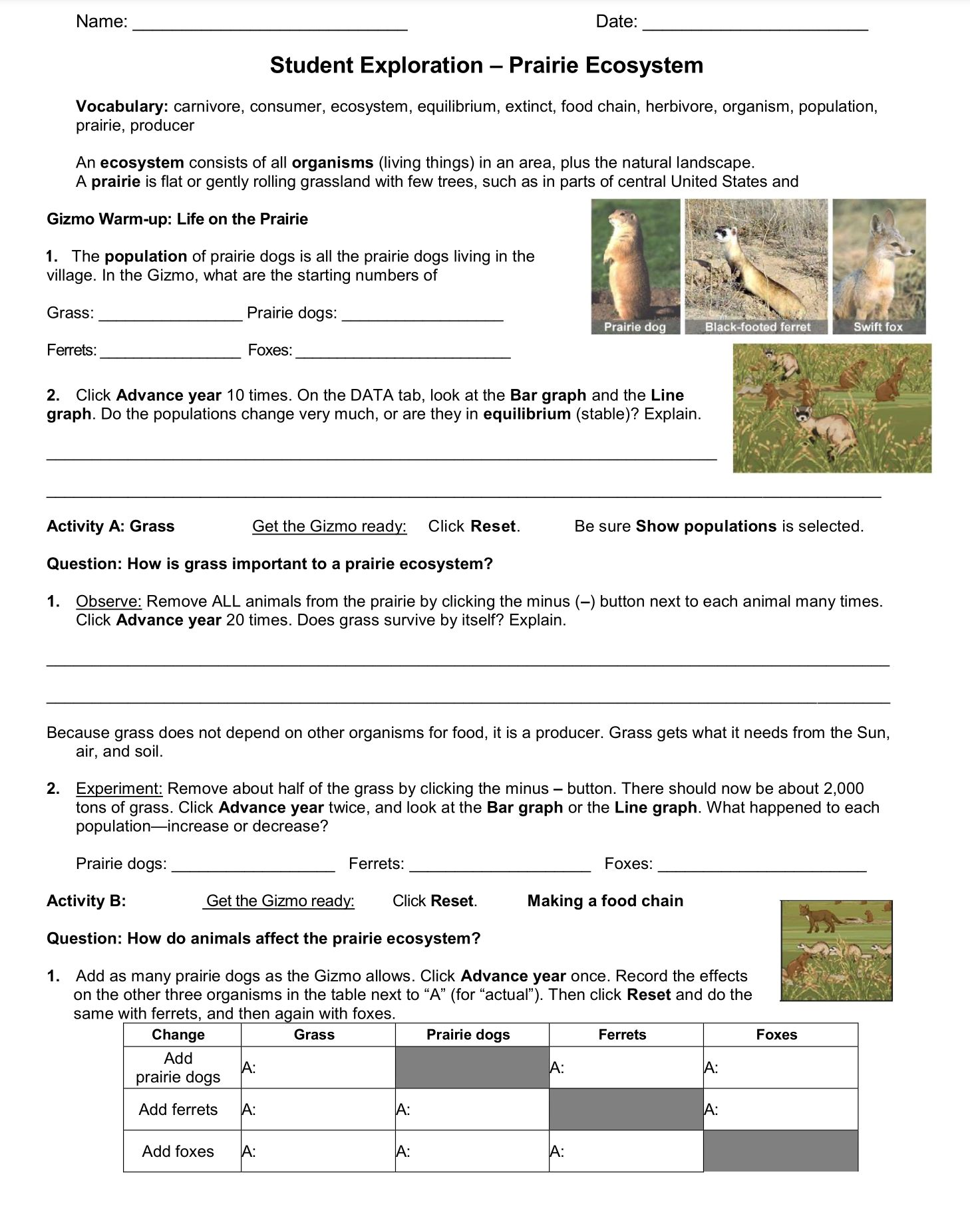 Prairie Ecosystem Student Exploration Worksheet Go To Www