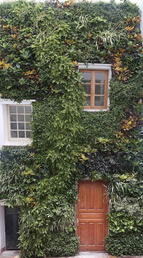 La quinta habitación, especialistas en jardinería en hoteles
