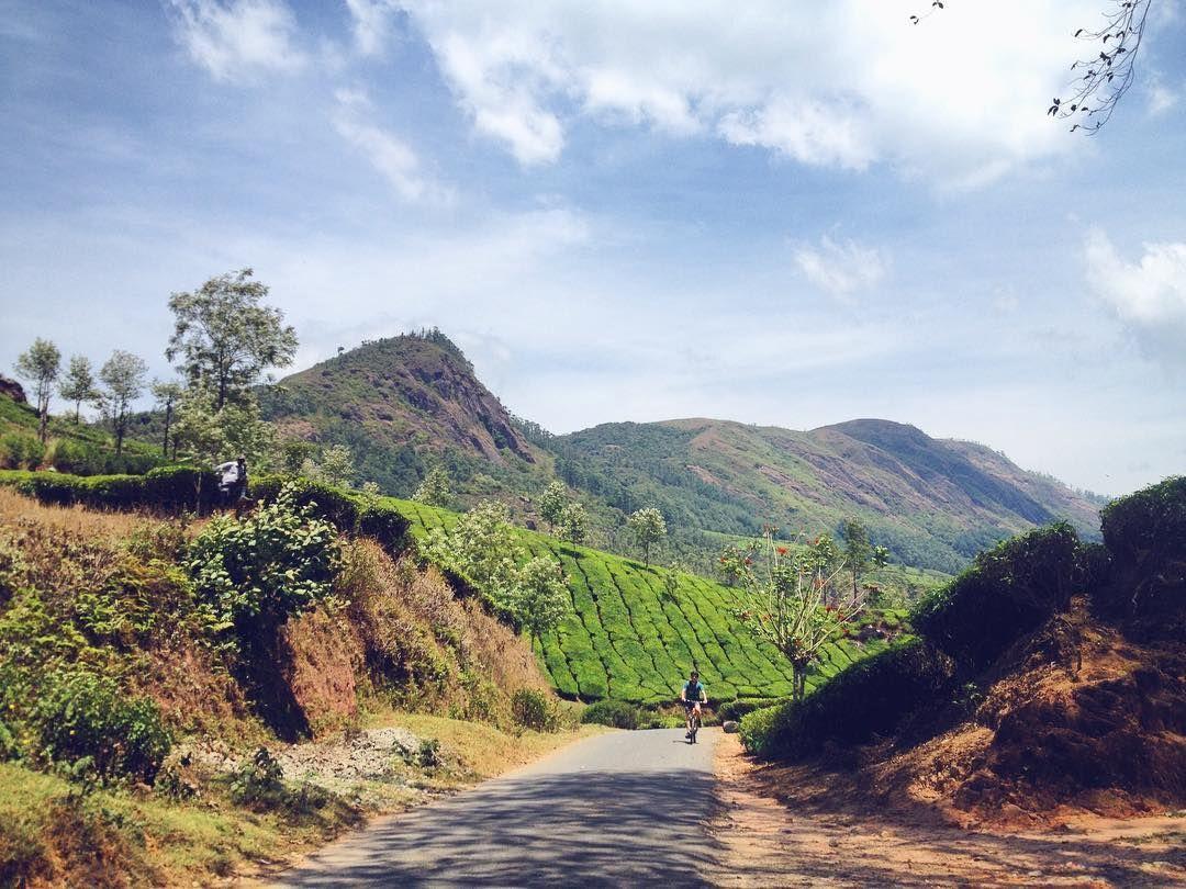 Stunning bike ride in between kilometers of green tea plantations. #indiaescape #woutletizia