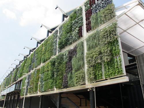 Milano Grune Architektur Garten Munchen Und Grune Fassade
