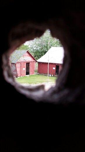 Taking a peek!