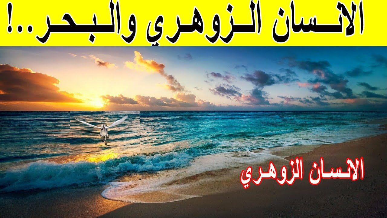 هل للا نسان الزوهري علاقة بالبحر الانسان الزوهري Outdoor Celestial Sunset