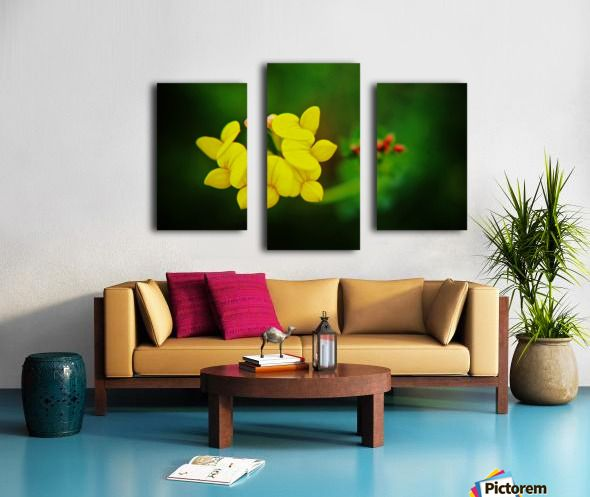 Little Yellow Blooms - Don  Baker  - Canvas