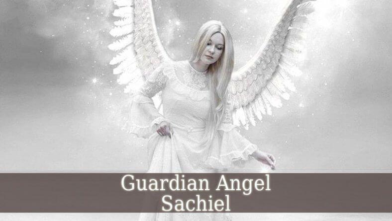 16+ Angel sachiel information