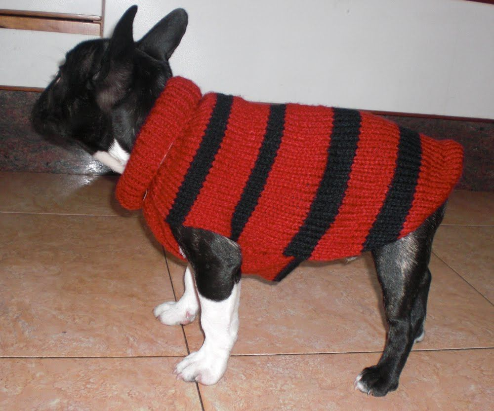 MI RINCON: LABORES( Abrigo para perro) | cositas chulas lana | Pinterest