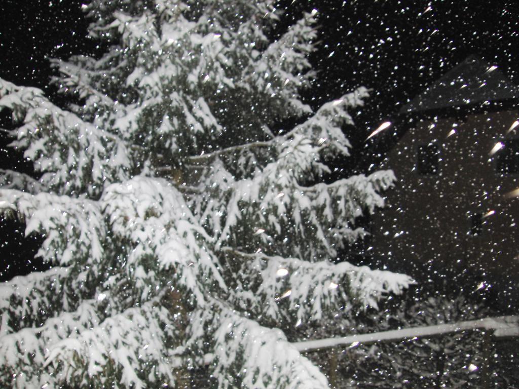 RE: 16.01.2013 - Aktuelle Wettermeldungen - 5