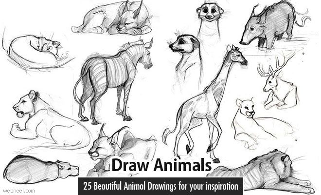 how to draw a simple mammoth
