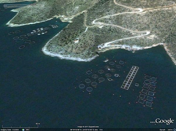 bird's eye view of aquaculture