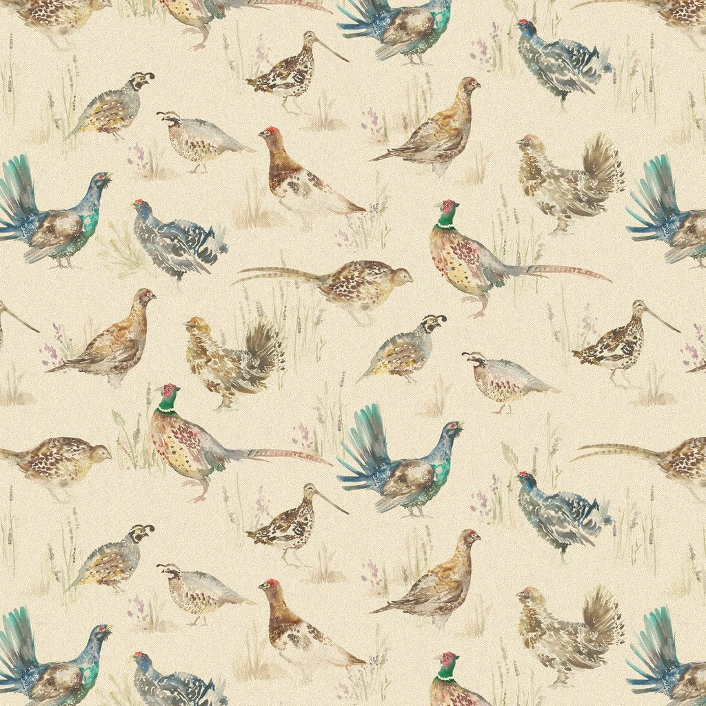 field dressing a deer diagram 2 way lighting wiring uk best 25 43 gamebirds ideas on pinterest pretty birds