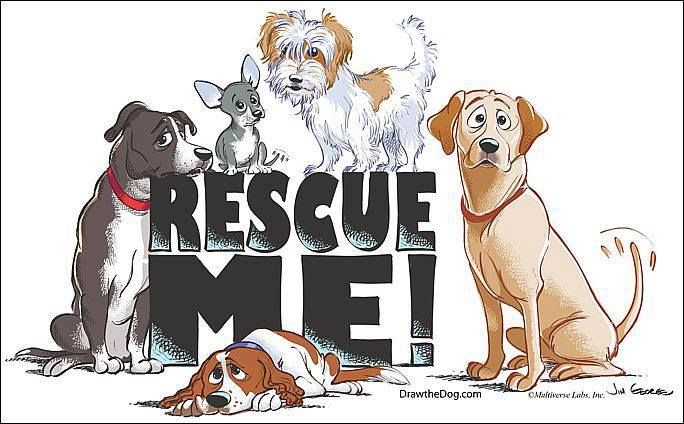 Rescue Says It All Animal Rescue Rescue Dogs Animal Rescue