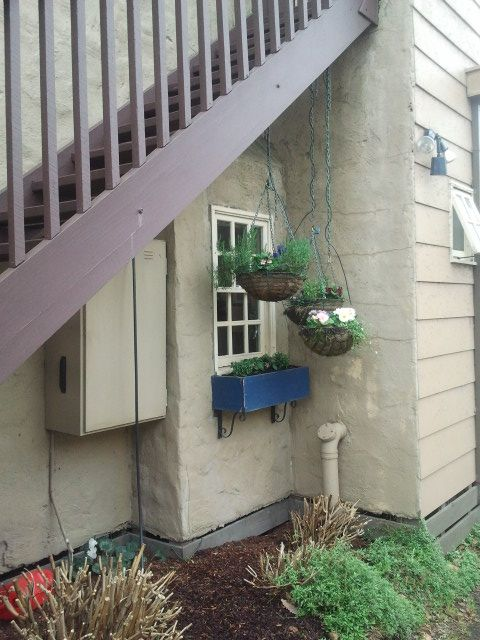 Cute little window on the side of Miss Marples tea rooms...