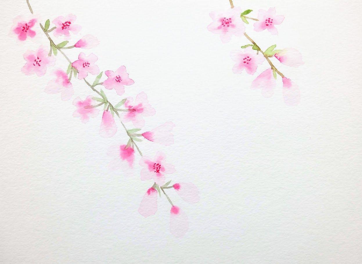Peindre Des Fleurs De Cerisier A L Aquarelle En 2020 Comment