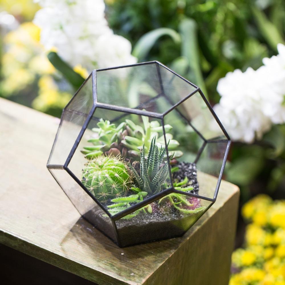 Modern Clear Glass Metal Geometric Terrarium Box Plant Planter Tabletop Vase