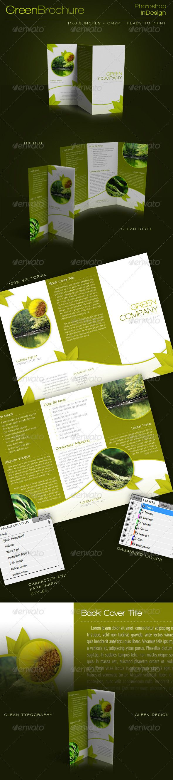 green trifold brochure indesign template pinterest indesign