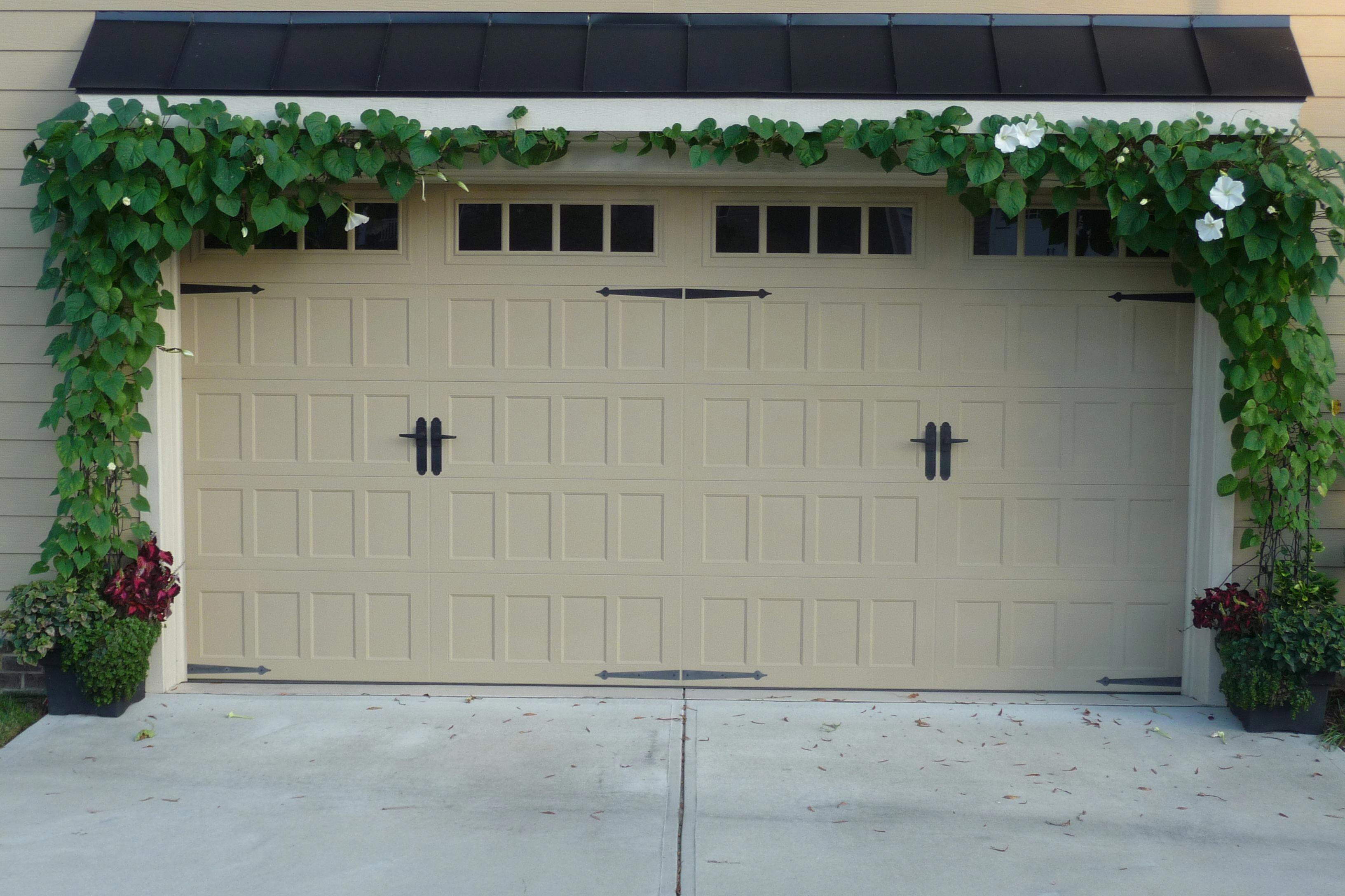 Moonvine Ipomoea Alba Growing Over The Garage Door Hidden Wire Support Trellis Wire Pergolaheight Garage Doors Garage Trellis Pergola Shade Cover