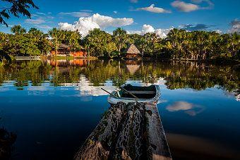 der Dschungel - Amazonas von Peru
