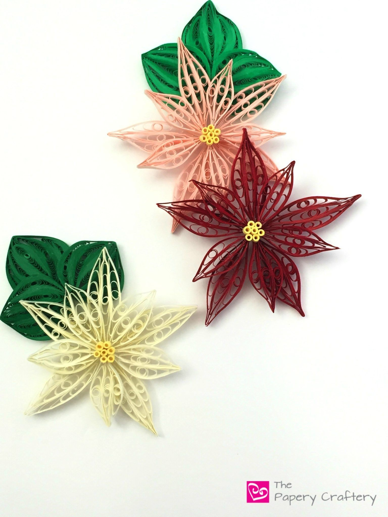 Quilling Paper Poinsettia Flowers Pinterest Quilling Comb