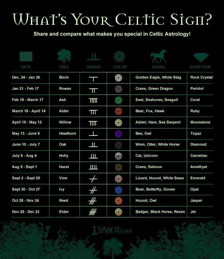 Celtic Signs  I'm Alder-III-orange-Bear, Fox, Hawk-Ruby