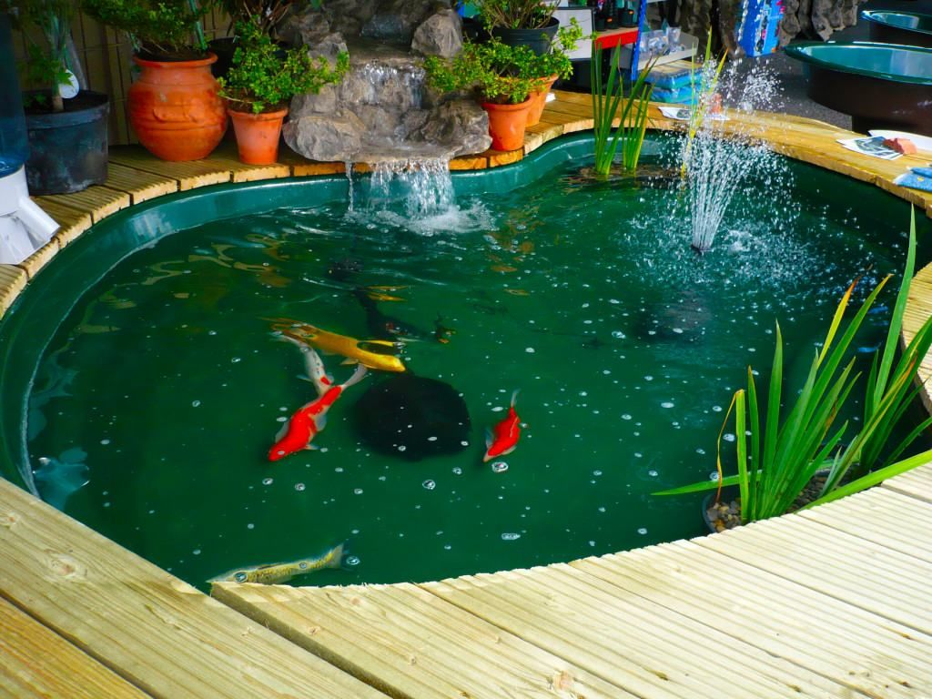 9 awesome diy koi pond and waterfall ideas for your back for Garden table fish pond