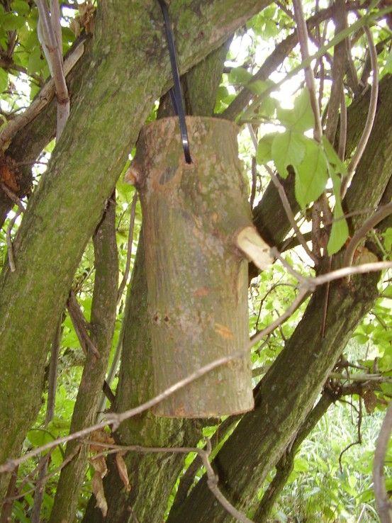 geocache-attached log