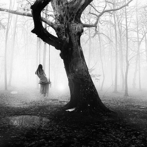 Greek photographer George Christakis   mist   fog   woods   forest   trees   swing   solitude   eerie   swamp  