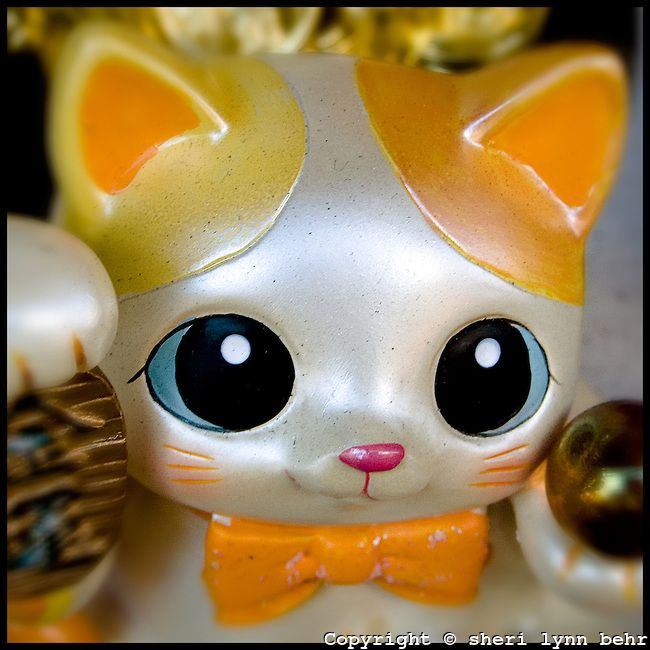 White Lucky Cat with big eyes and orange ears and bowtie, is standing in the window of a shop in Chinatown with right paw raised to attract ...