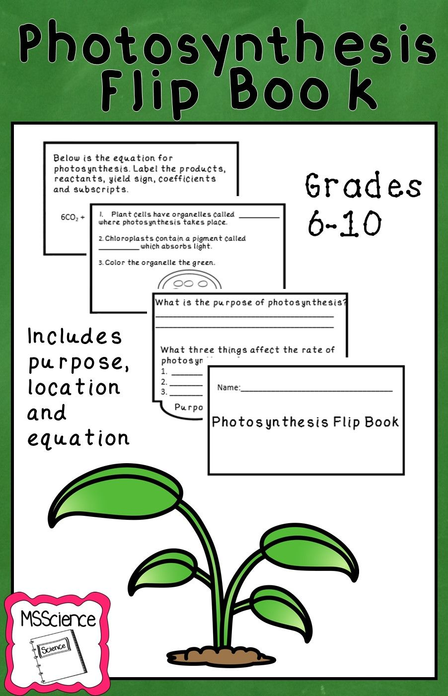Photosynthesis Flip Book (With images) | Flip book, High ...