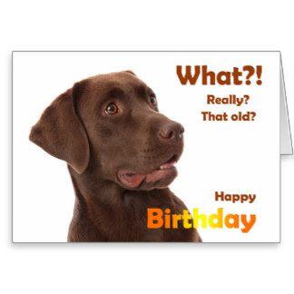 Happy Birthday Fun Card With Labrador Dog