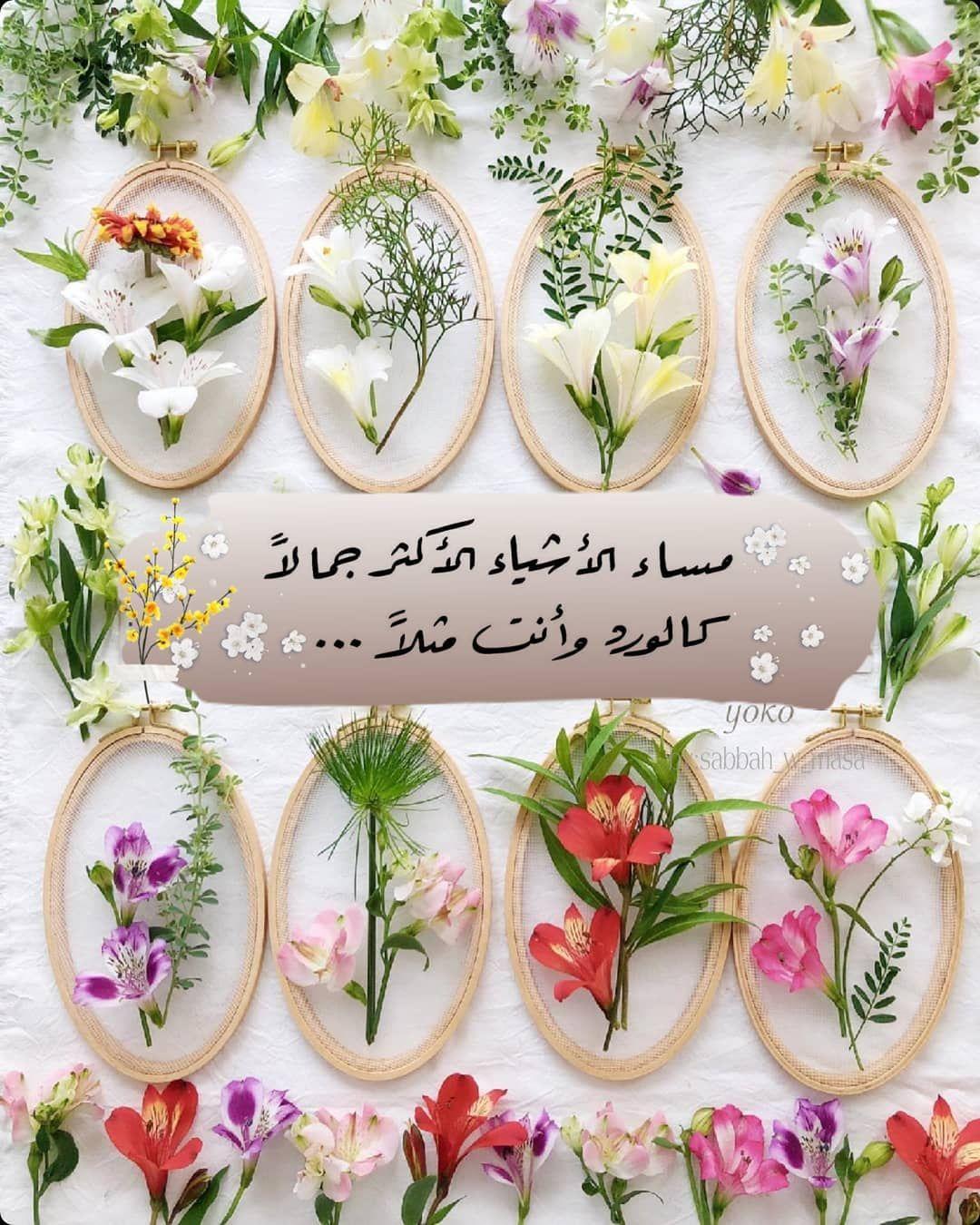 صبح و مساء On Instagram مساء الخير مساء الورد تصميم تصاميم السعودية صب Good Night Messages Flower Wallpaper Happy Saturday