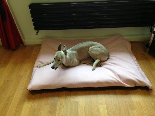 KosiPet Lt/Baby Pink Fleece Large Spare Cover For Dog Bed,Pet Bed ** You can get more details here : Pet dog bedding