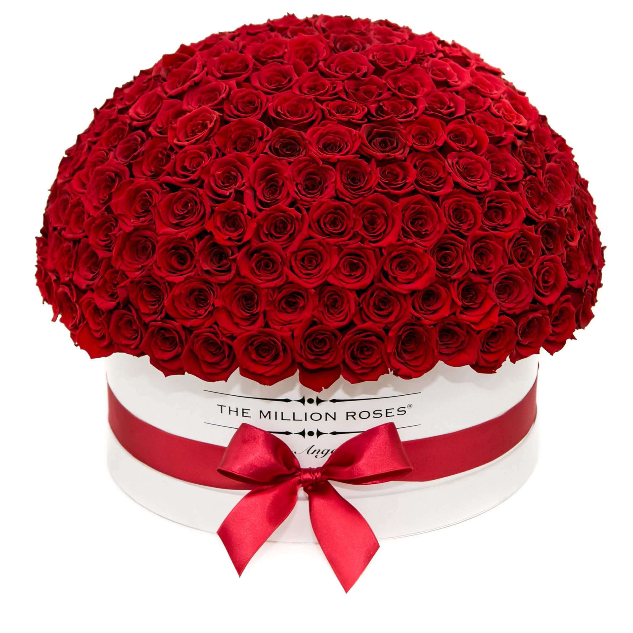 The Million Deluxe Dome Box Black Dark Red Dome Roses Birthday Flowers Arrangements Preserved Roses Box Roses
