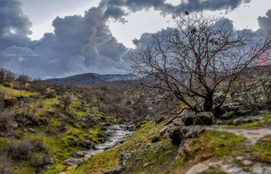 """Kurdistan """" earth paradise """" by Mohammed Hussein  Photography"""