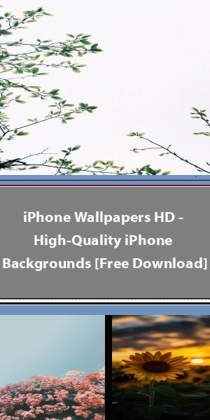 ▷ 1001 + ideas to choose the best iPhone wallpaper Sunflower wallpaper iphone x #sunflowerwallpaper ▷ 1001 + ideas to choose the best iPhone wallpaper Sunflower wallpaper iphone x #sunflowerwallpaper