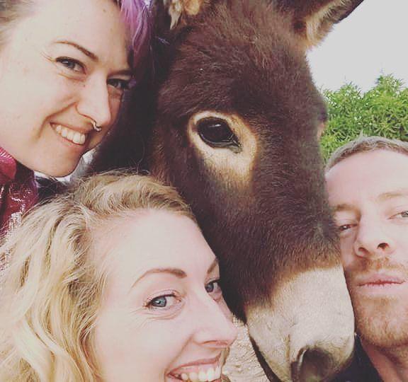 #BabyDonkey #HappyDonkey #donkeyselfie #Donkey #win #BerberLife by bozzybutterfly