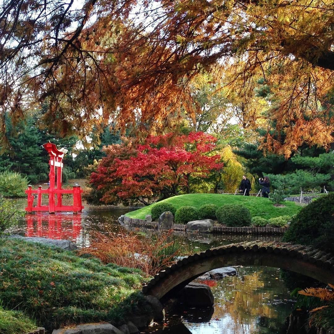Brooklyn Botanic Garden Brooklyn Botanic Garden is a botanical ...