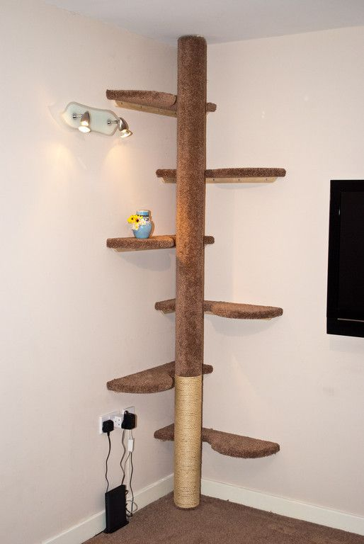 Hand made cat tree six curved shelves and central pole to for Bookshelf cat tower
