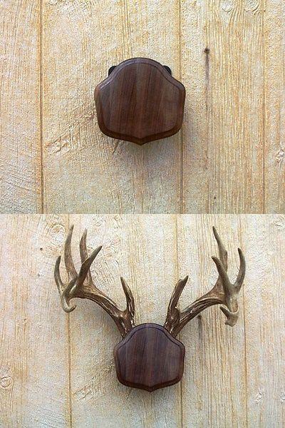 Details about Black Walnut The Deer Stand Antler Mounting ...