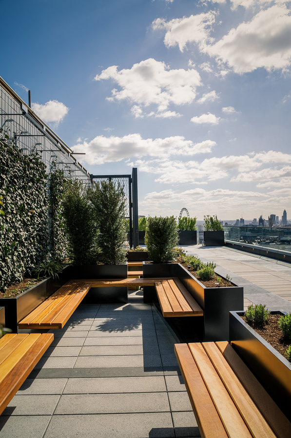 Post Building Project Europlanters Rooftop Design Outdoor Meeting Space Green Terrace