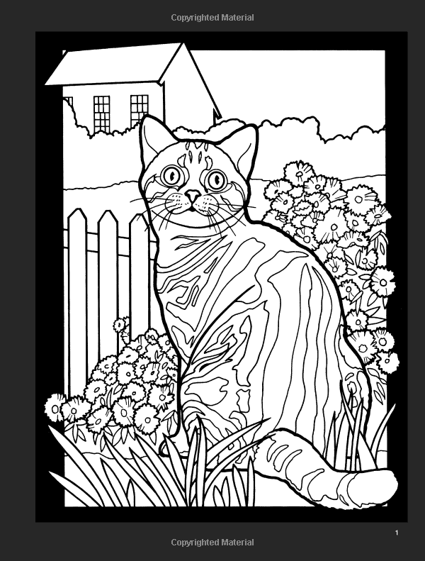 Cats Stained Glass Coloring Book Dover Nature Ruth Soffer