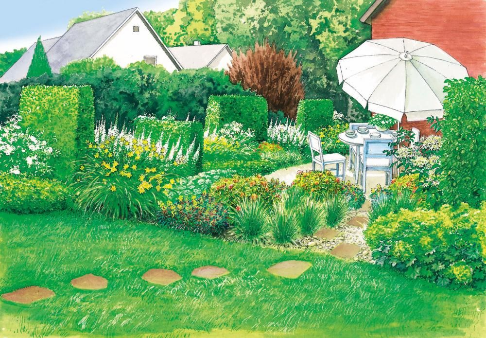 1 Garten 2 Ideen Bluhender Sichtschutz Fur Die Terrasse Gartengestaltung Garten Gestalten Buchenhecke