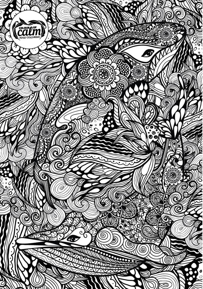dolphin whale zentangle free colouring pagescoloring - Coloring Pages Whales Dolphins