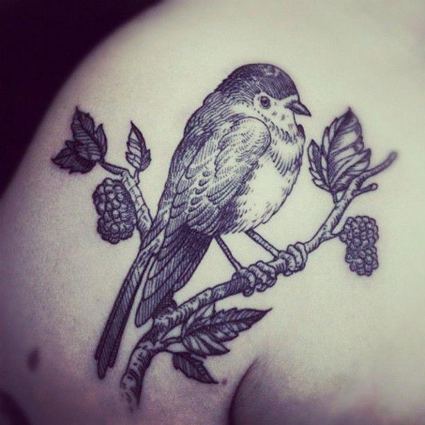 bird on a branch by otto d ambra shoulder tattoos http pinterest rh pinterest com bird sitting on a branch tattoo bird on a branch tattoo meaning