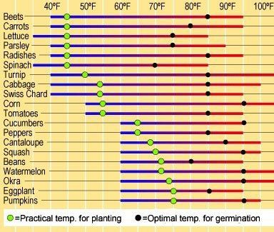 Ideal Ground Temperatures For Seed Germination Germination