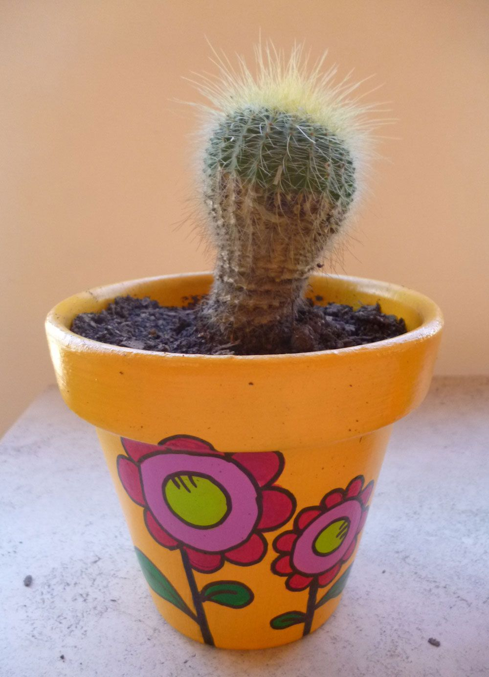 Maceta pintada a mano en acr lico con cactus decoracion for Decoracion de patios con macetas