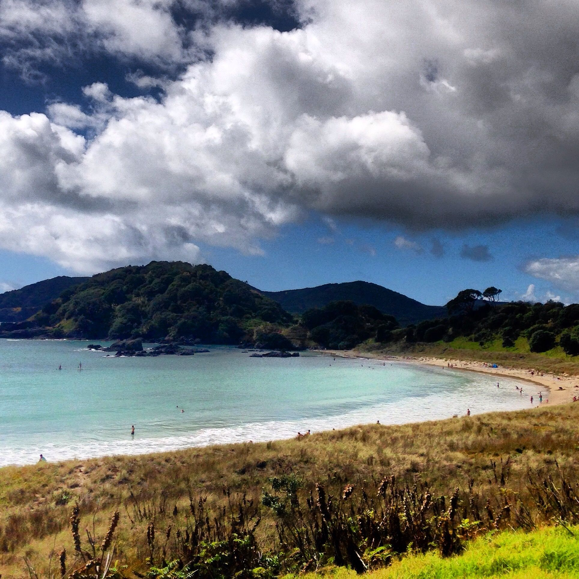 Exploring the beaches of Northland, NZ | MiNDFOOD