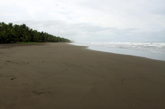 esterillos sand   - Costa Rica