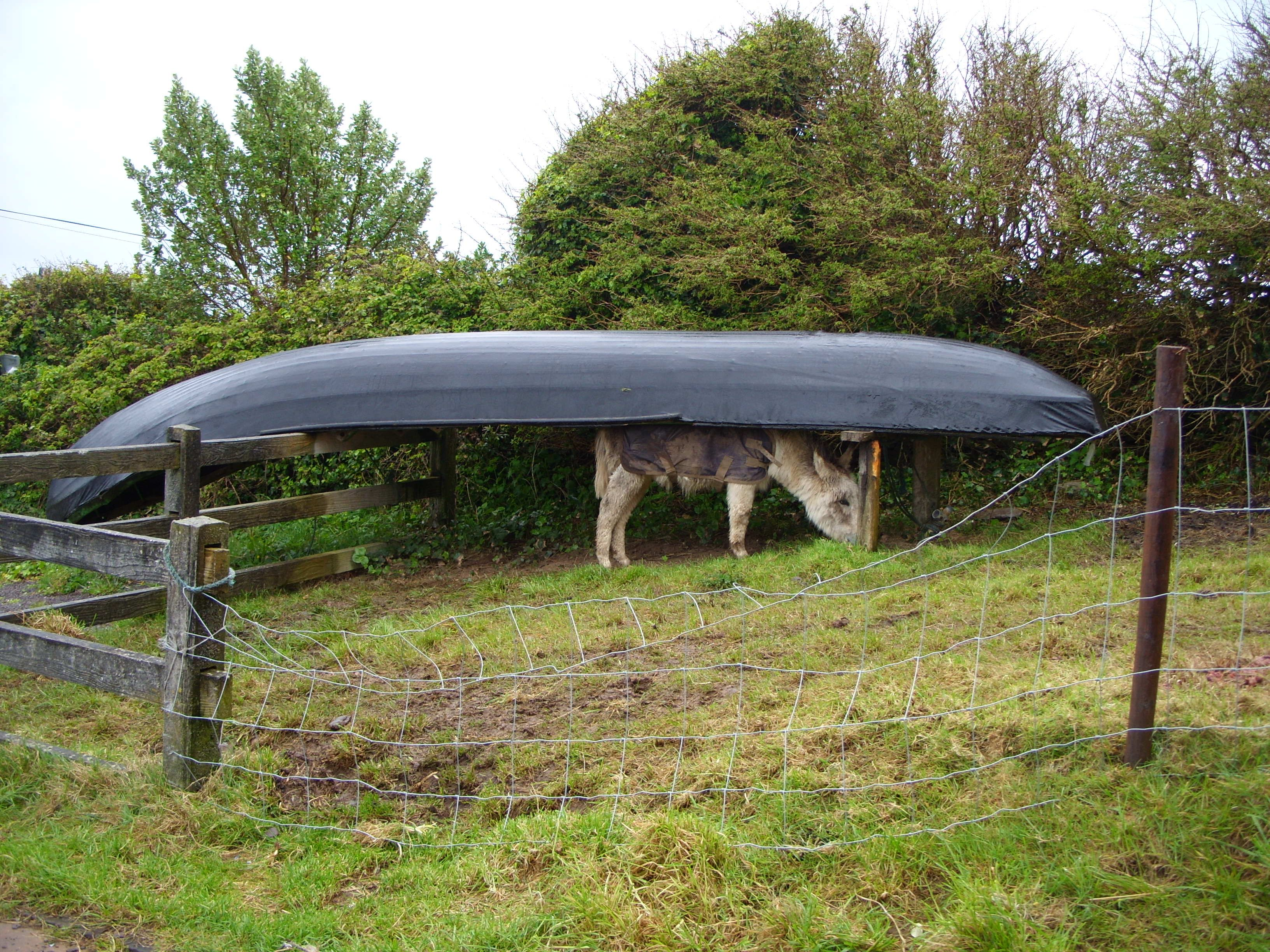 Air-dry shelter for the winter